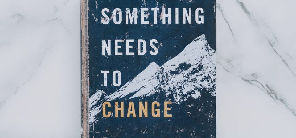Do We Want System Change or Systems Change?