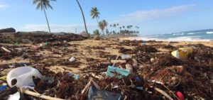 Time for Rebellion: Let Disposable Plastic Become Extinct!
