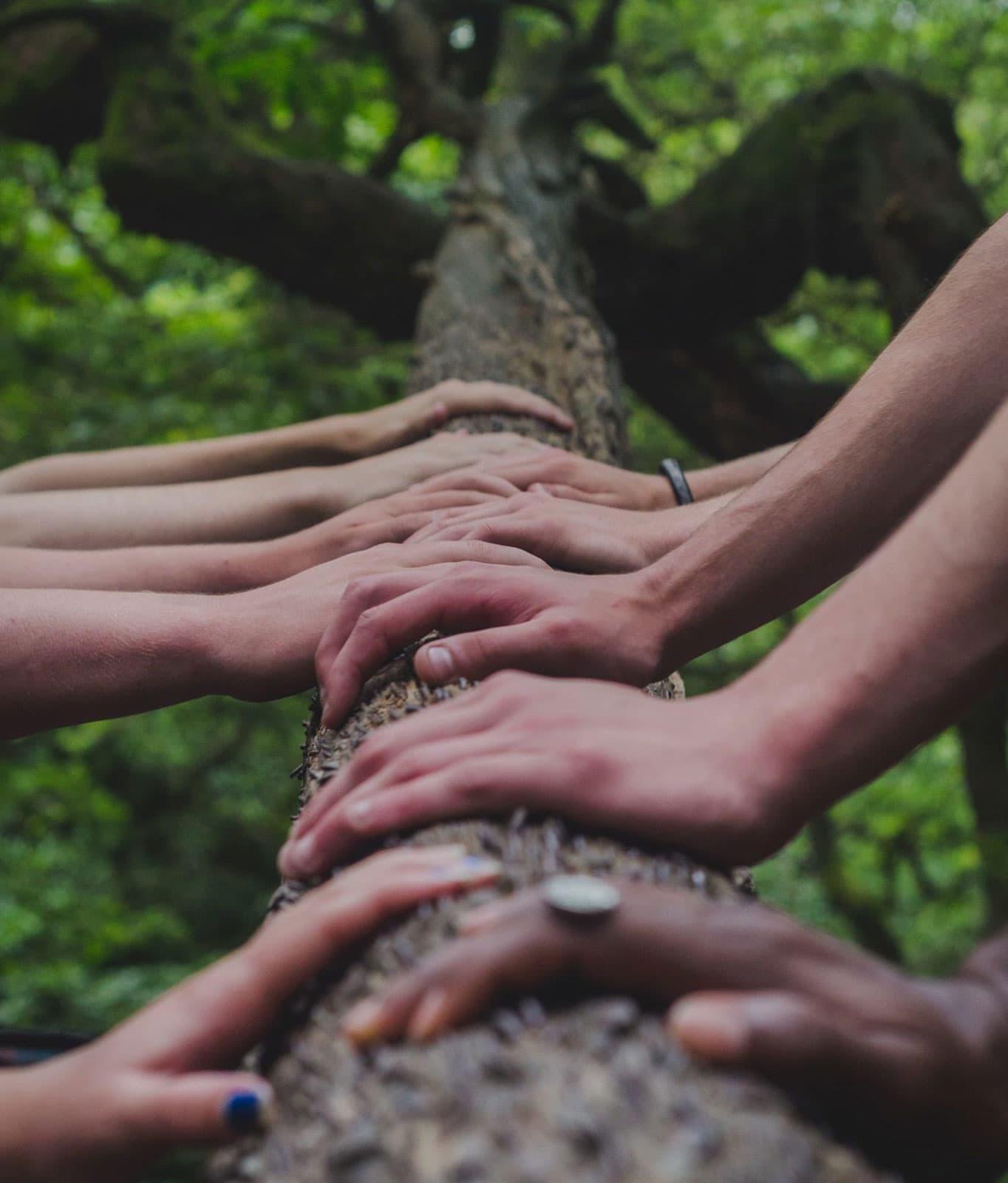 Towards a Manifesto of the ReGeneration
